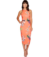 Ted Baker - Joelia Tropical Oasis Bodycon Dress