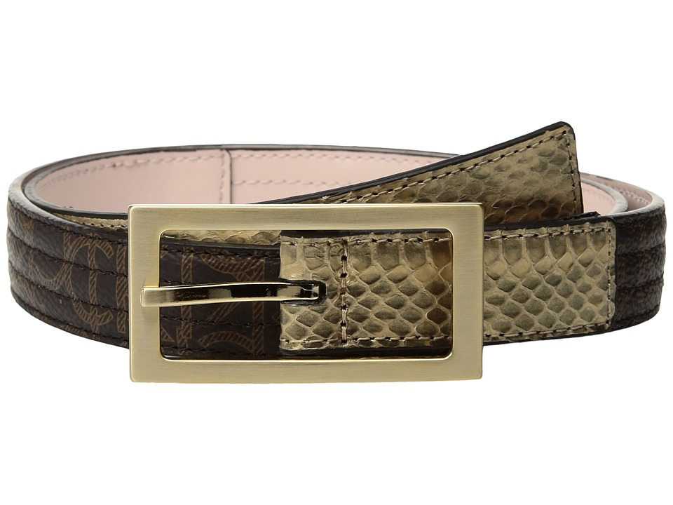 Calvin Klein 25mm Trapunto Strap w/ Flat Tabs (Brown Logo/Gold Snake/Brushed Gold) Women