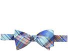 Tommy Hilfiger - Castora Plaid Self-Tie Bow
