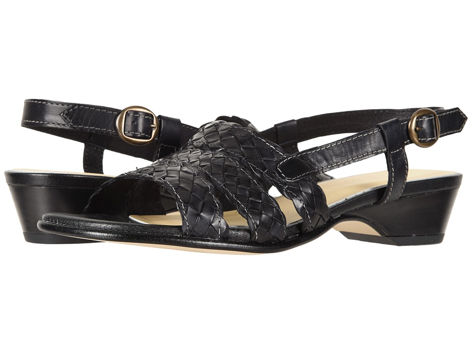 David Tate Bellisima (Black) Women's Shoes