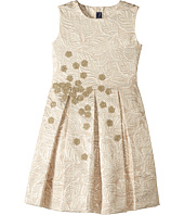 Oscar de la Renta Childrenswear - Jacquard Party Dress (Toddler/Little Kids/Big Kids)