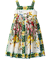 Dolce & Gabbana Kids - Caltagirone Vase Print Poplin Dress (Big Kids)