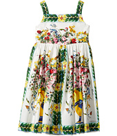 Dolce & Gabbana Kids - Caltagirone Vase Print Poplin Dress (Toddler/Little Kids)