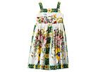 Dolce & Gabbana Kids - Caltagirone Vase Print Poplin Dress (Toddler/Little Kids)