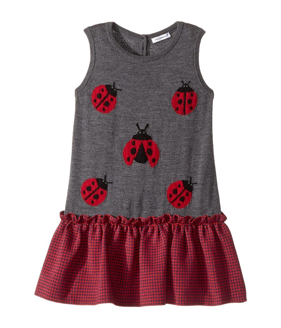 Dolce & Gabbana Kids - Back to School Lady Bug Dress (Toddler/Little Kids) (Grey) Girl's Dress
