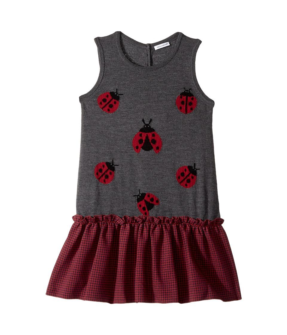 Dolce & Gabbana Kids - Back to School Lady Bug Dress (Big Kids) (Grey) Girl's Dress