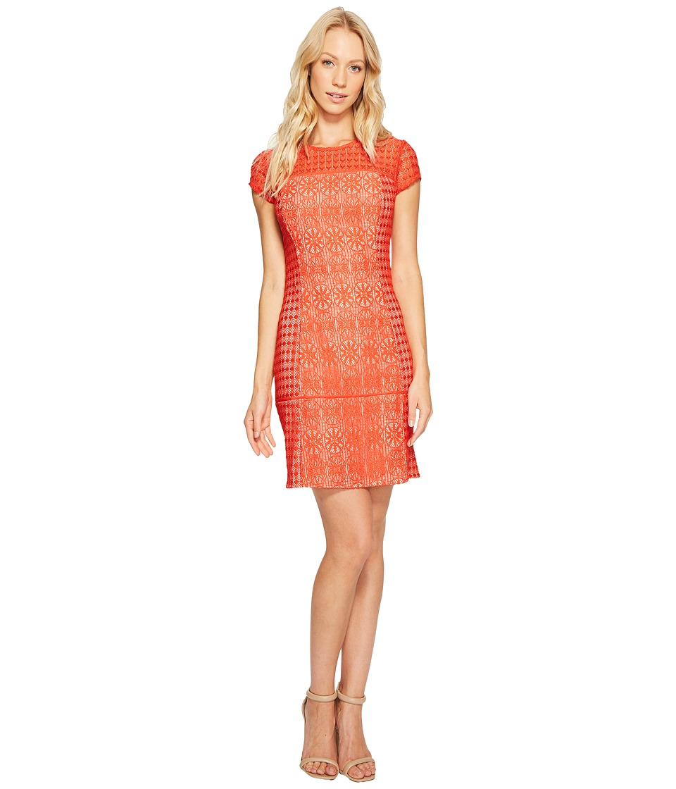 Jessica Simpson - Short Sleeve Lace Dress (Red) Womens Dress