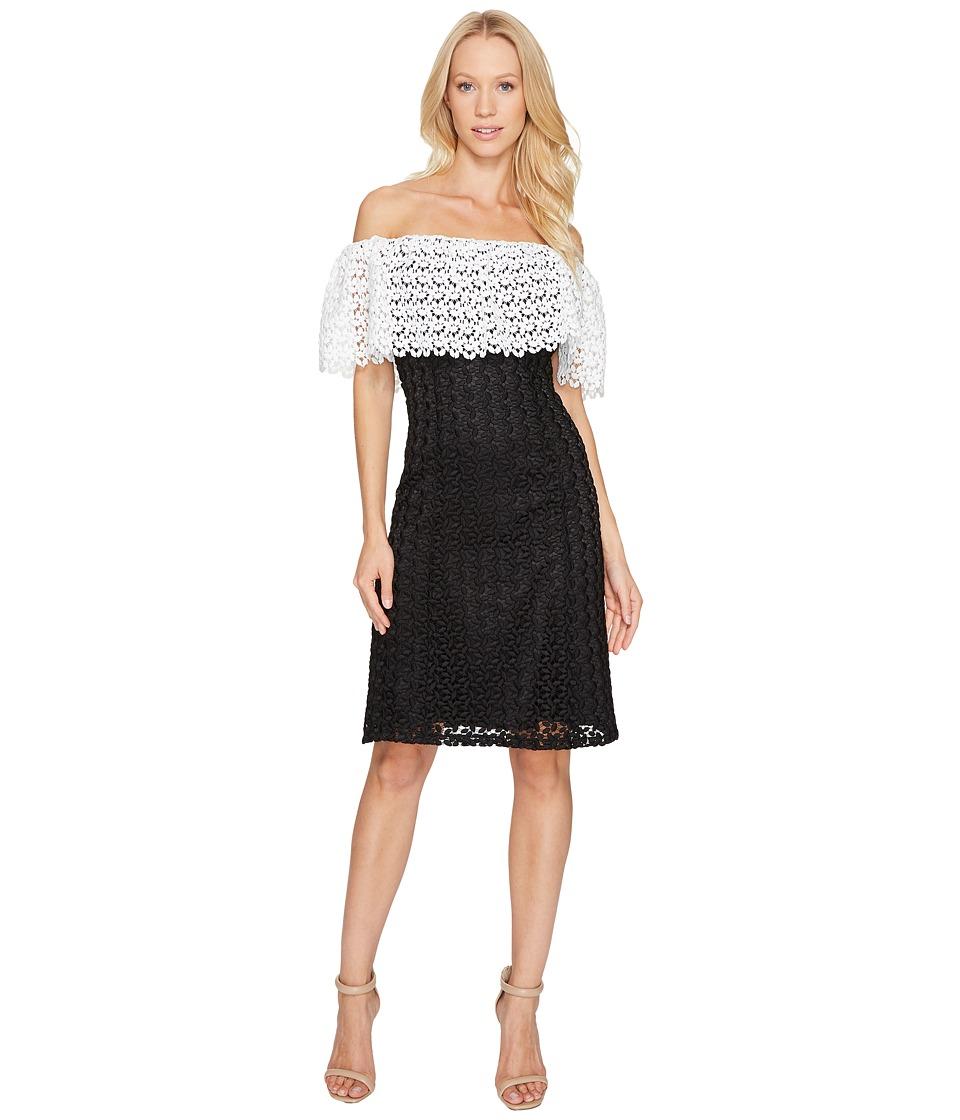 Tahari by ASL Lace Combo Cold Shoulder Dress (Black/White) Women