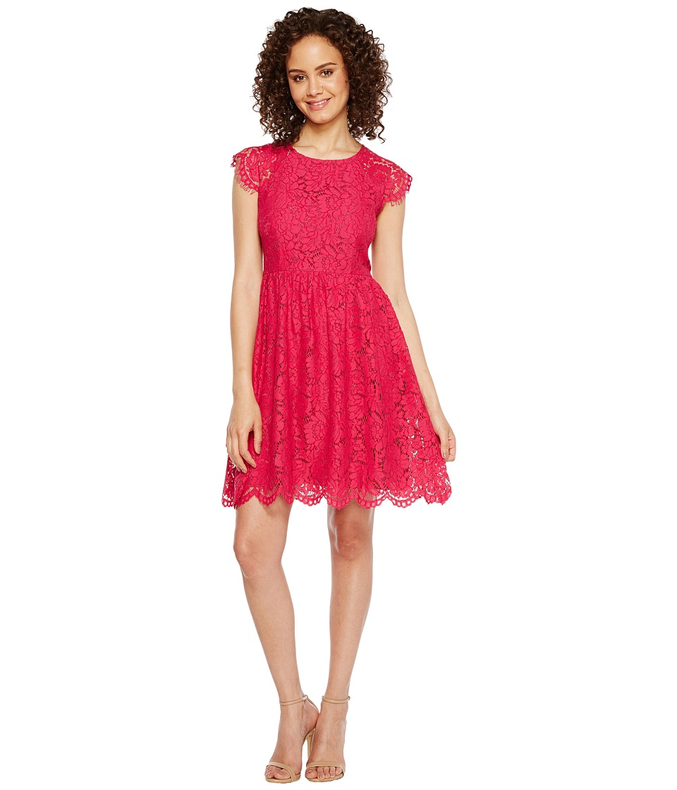 Jessica Simpson - Lace Fit and Flare Dress JS7A9597 (Azalea) Womens Dress