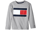 Tommy Hilfiger Kids Tommy Flag-Bex Jersey Long Sleeve Tee (Big Kids)