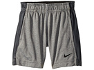 Nike Kids Dry Fly Short (Toddler)