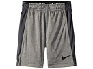 Nike Kids Dry Fly Short (Little Kids)