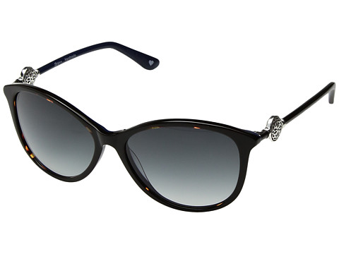 Brighton Ferrara Sunglasses - Tortoise/Navy