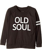 Chaser Kids - Cotton Long Sleeve Raglan T-Shirt (Toddler/Little Kids)