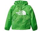 The North Face Kids Flurry Wind Hoodie (Little Kids/Big Kids)