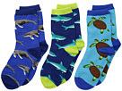 Socksmith Little Swimmers (Toddler/Little Kid/Big Kid)