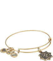Alex and Ani - Healing Love II Bangle