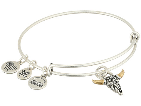 Alex and Ani Spirited Skull Bangle - Rafaelian Silver
