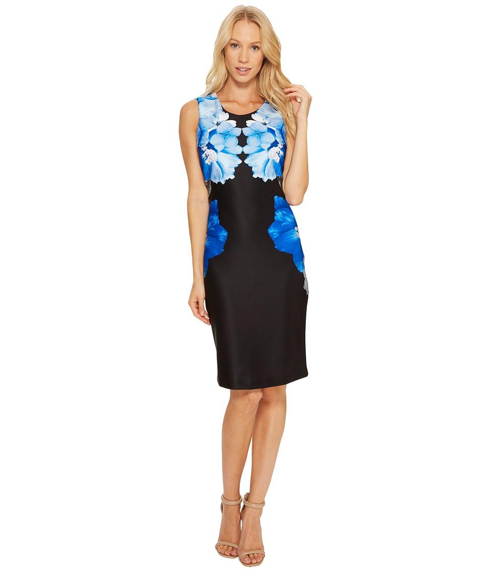 Calvin Klein Printed Scuba Sheath Dress (Black/Celestial) Women