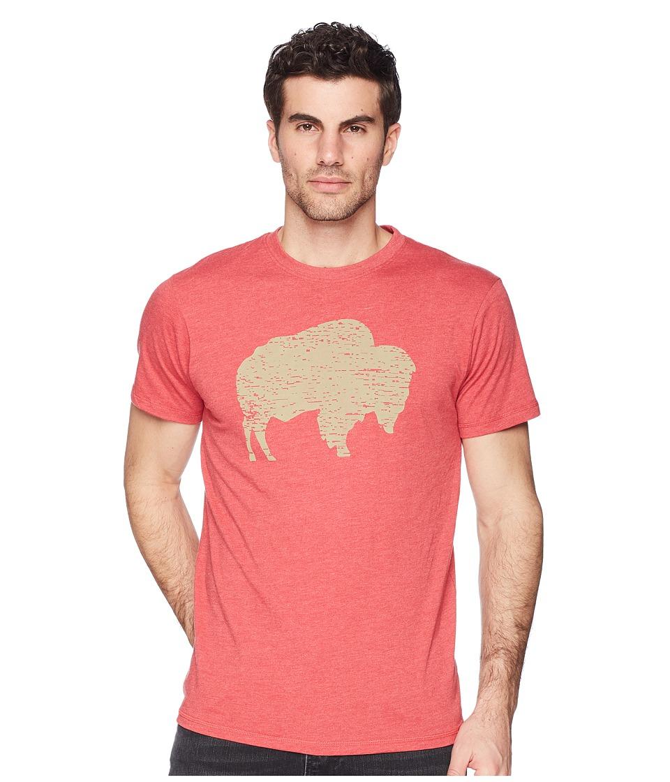 Mountain Khakis - Bison T-Shirt (Red Heather) Mens T Shirt