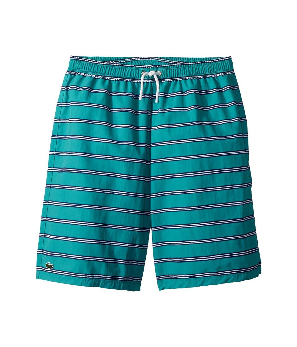 Lacoste Kids - Hand Drawn Striped Swim Trunks (Little Kids/Big Kids) (Earthenware Green) Boys Swimsuits One Piece