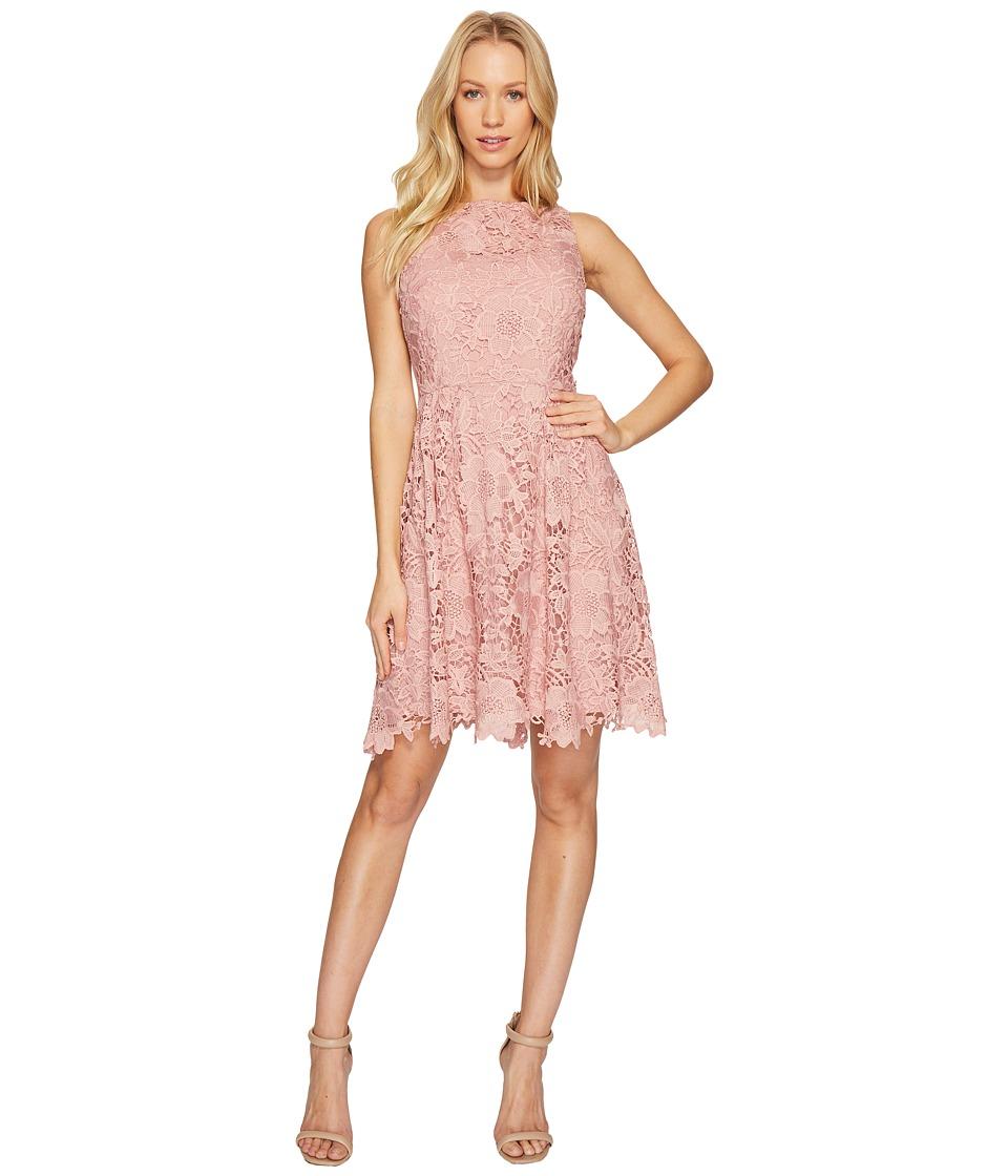 CeCe Claiborne Sleeveless Lace A-Line Dress (Rose Pearl) Women