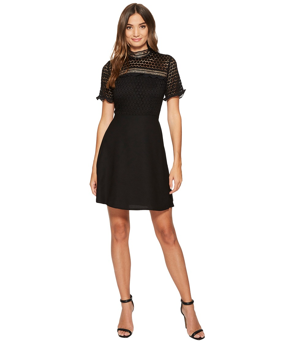 CeCe Lillian Sleeveless Lace Fit and Flare with Trim (Rich Black) Women