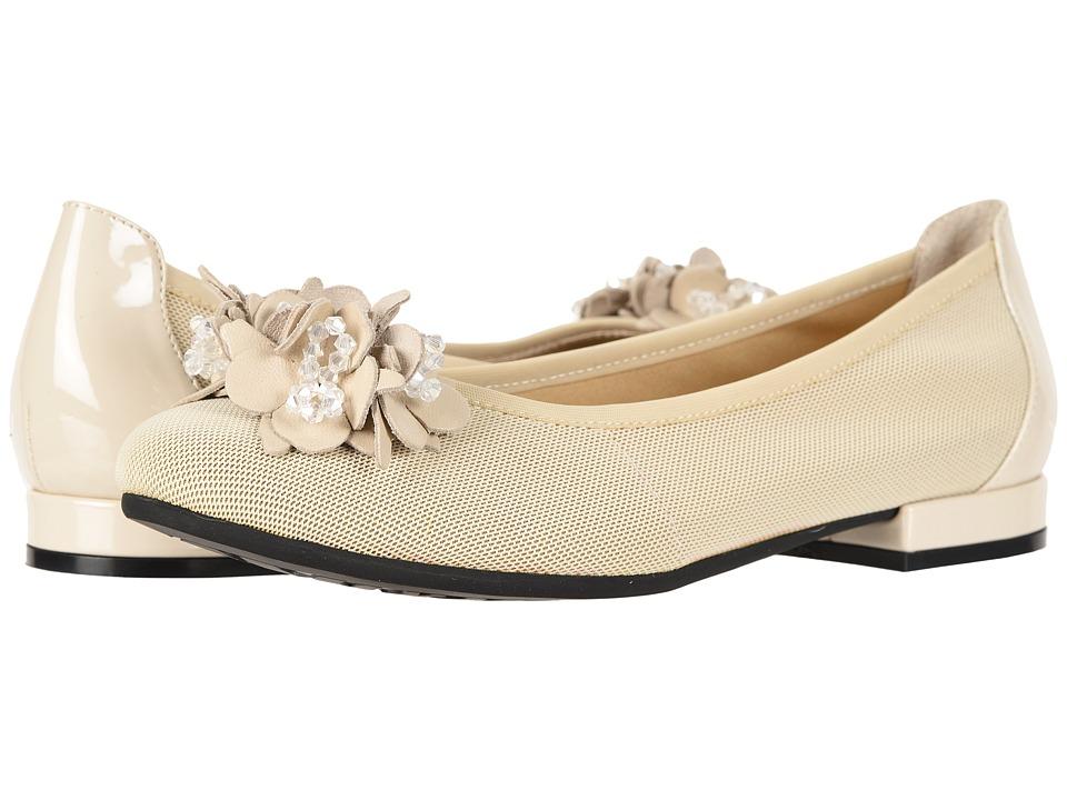 David Tate - Magnetic (Bone) Womens  Shoes