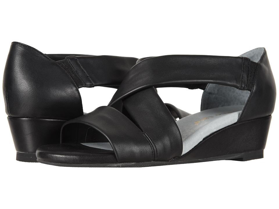 David Tate - Swell (Black) Womens  Shoes