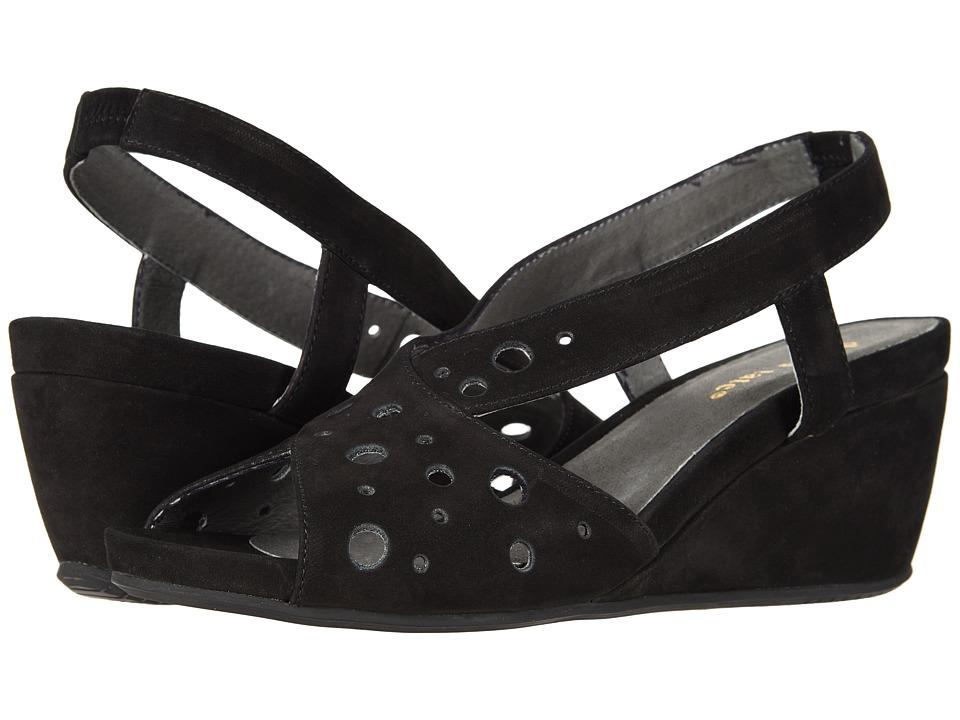 David Tate - Yummy (Black) Womens  Shoes