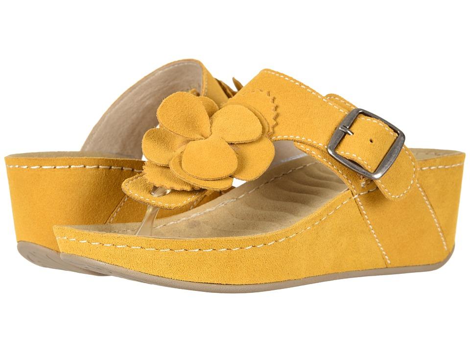David Tate - Spring (Mustard Suede) Womens Clog/Mule Shoes