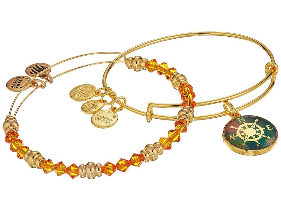 Alex and Ani - Art Infusion Bracelet Set, Compass