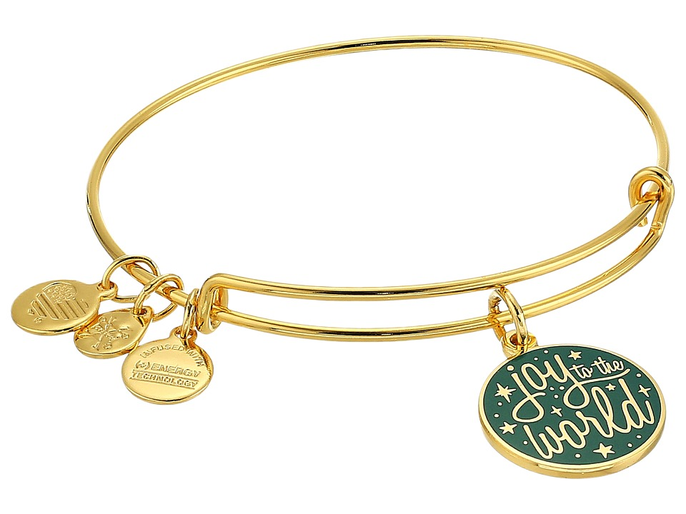 Alex and Ani - Words Are Powerful Joy To The World Bangle