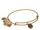 Alex and Ani Charity By Design Pinecone Bangle