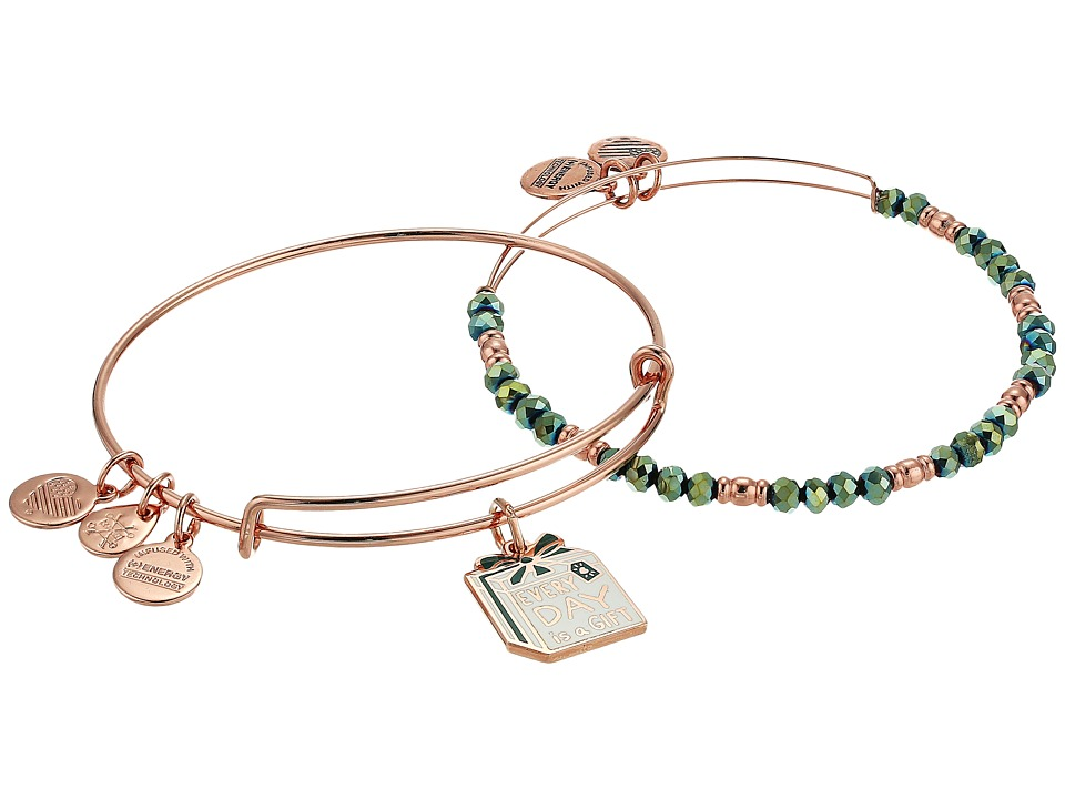 Alex and Ani - Everyday Is A Gift Set Of 2 Bracelet
