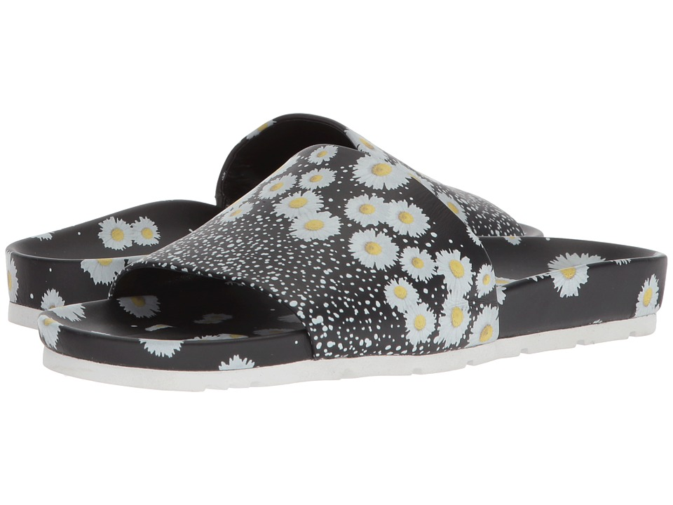 Kennel & Schmenger - Love Daisy Slide (Black/White Daisy) Womens Slide Shoes