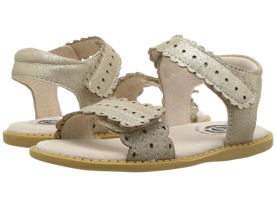 Livie & Luca - Posey (Toddler/Little Kid) (Gold Shimmer) Girls Shoes