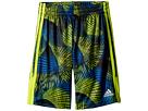 adidas Kids Amplified Net Shorts (Big Kids)
