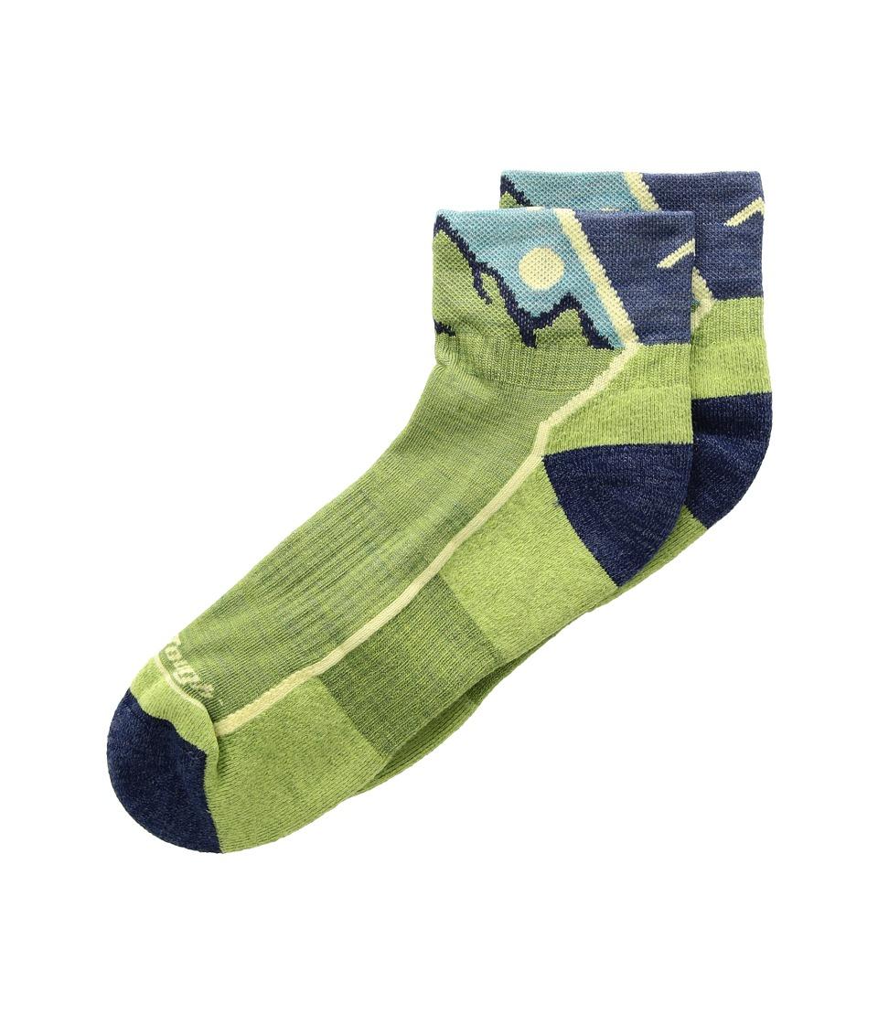 Darn Tough Vermont Hiker 1/4 Cushion Socks (Toddler/Little Kid/Big Kid) (Green) Quarter Length Socks Shoes