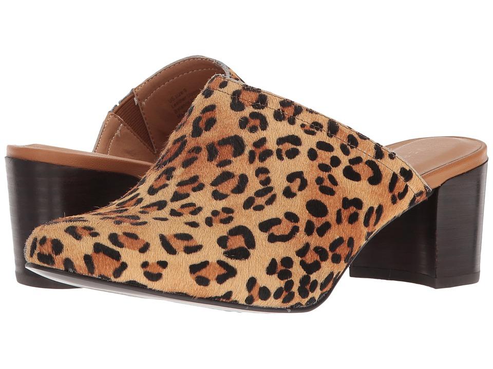 VOLATILE - Basque (Tan Leopard) Womens Clog/Mule Shoes