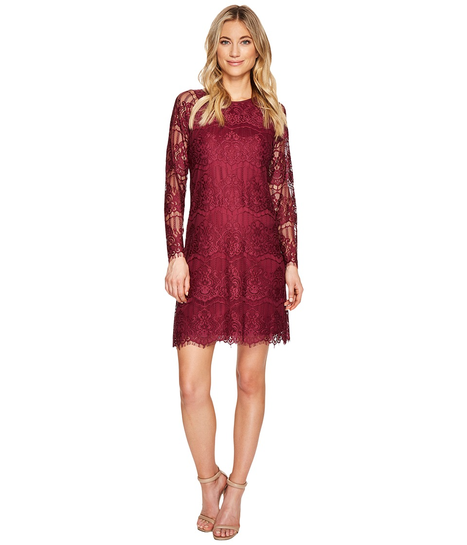 Adrianna Papell - Scalloped Lace Trapeze Dress
