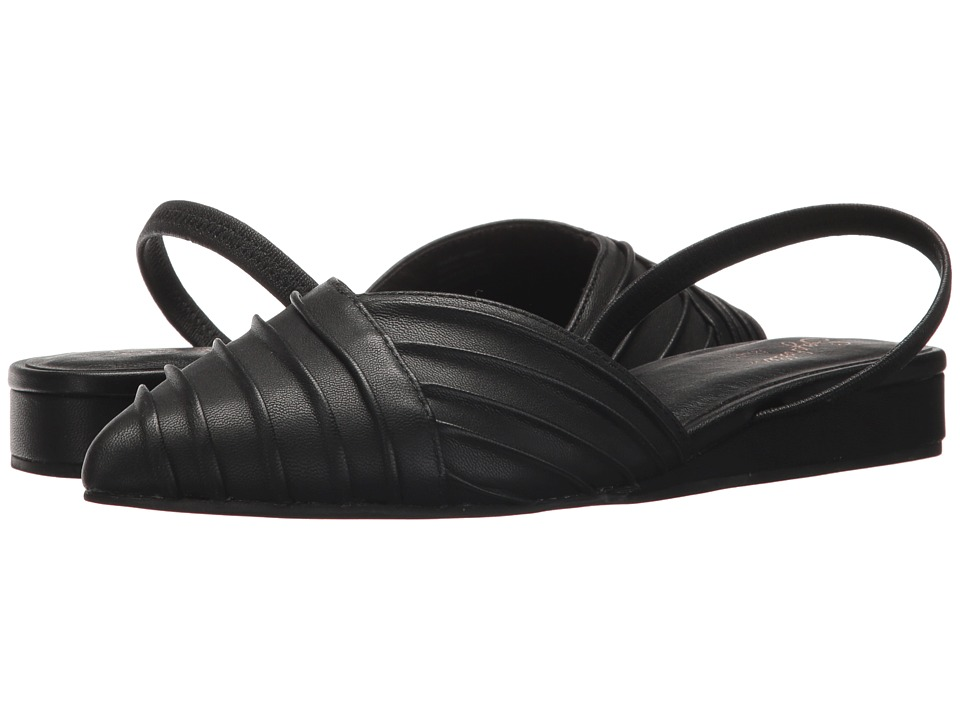 Seychelles Highly Touted (Black Leather) Women