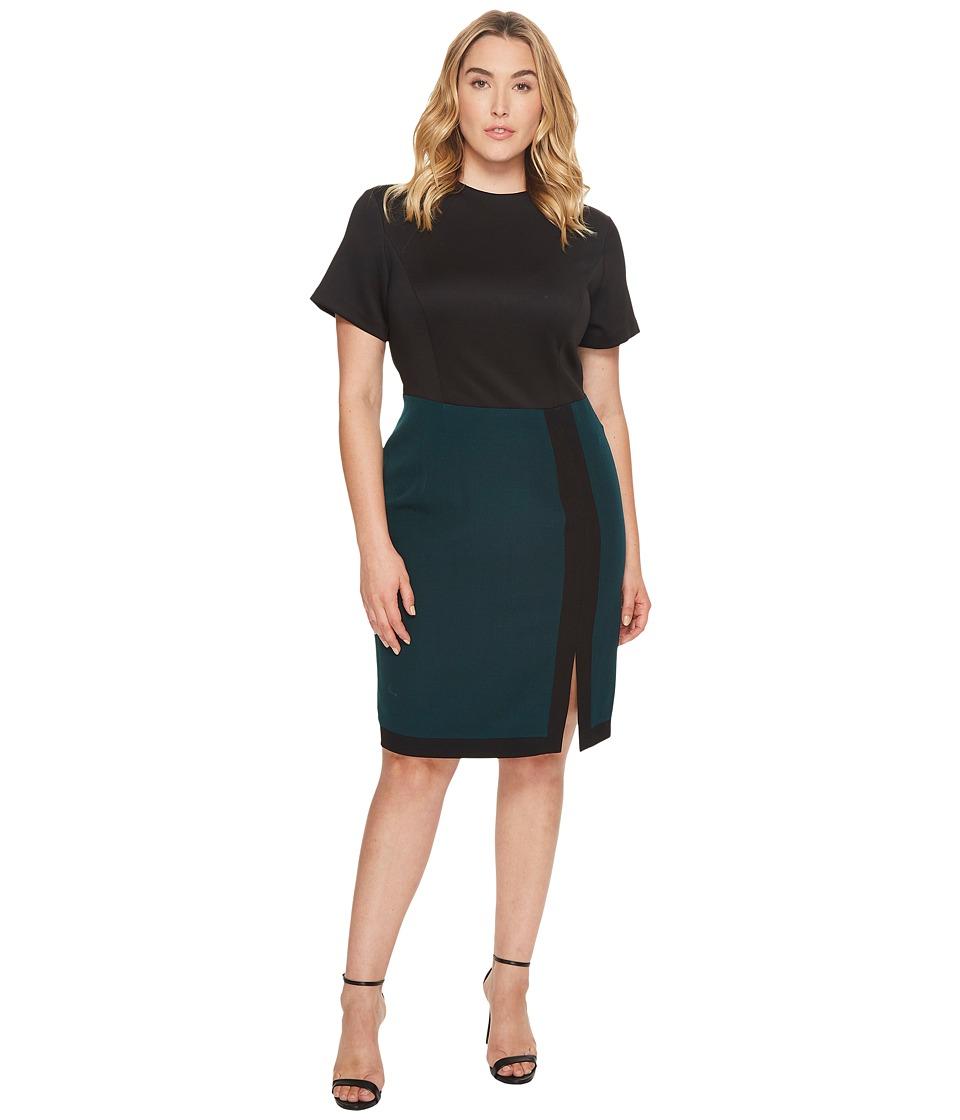 Adrianna Papell Plus Size Scuba and Crepe Color Block Sheath Dress (Hunter/Black) Women