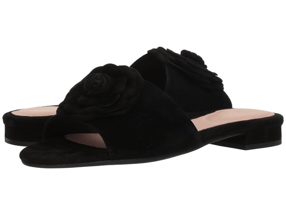 Taryn Rose - Violet (Black Silky Suede) Womens Slide Shoes