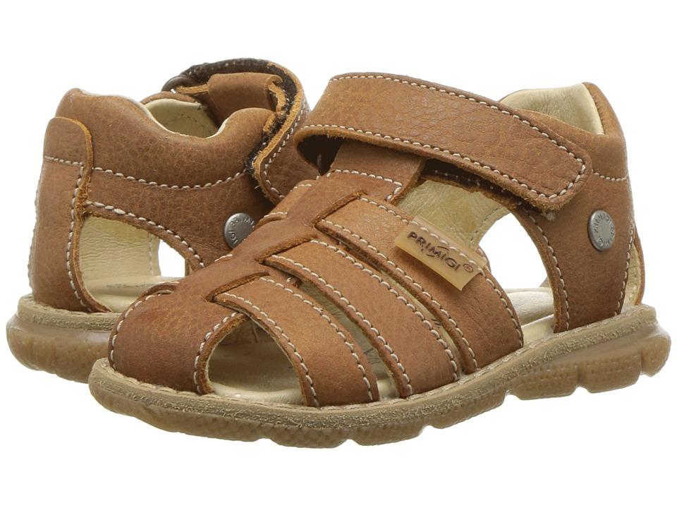 Primigi Kids - PPD 14125 (Toddler) (Brown) Boys Shoes