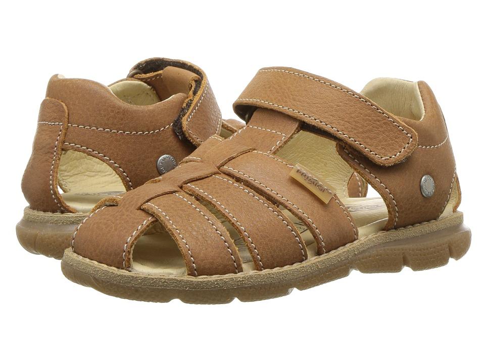 Primigi Kids - PPD 14125 (Toddler/Little Kid) (Brown) Boys Shoes