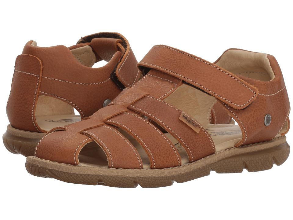 Primigi Kids - PPD 14125 (Little Kid) (Brown) Boys Shoes