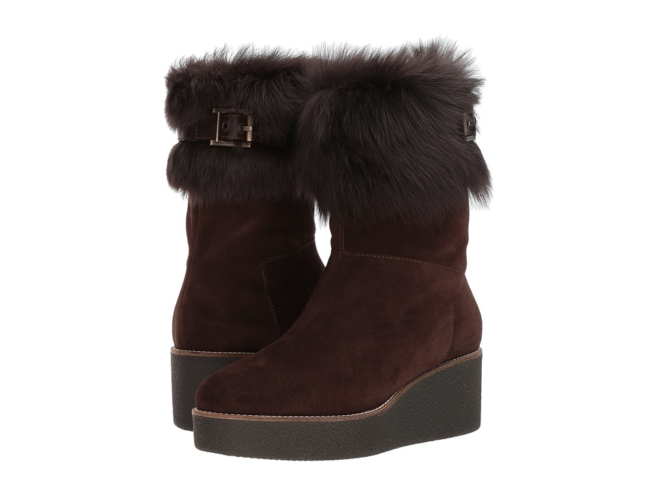 Aquatalia Vallaine (Dark Brown Suede) Women