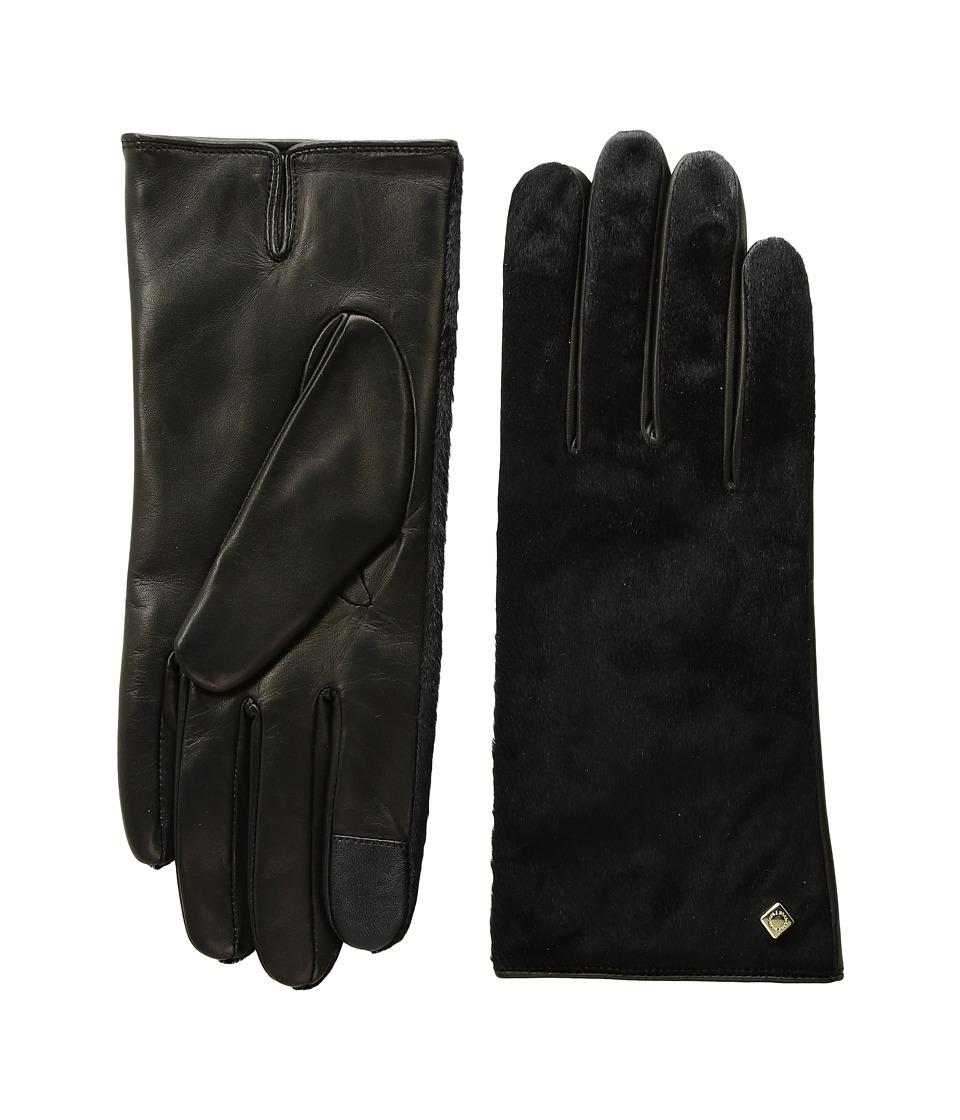 Cole Haan Haircalf Black Gloves (Black Haircalf) Dress Gloves