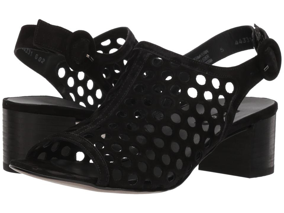 Paul Green Rae Heel (Black Suede) High Heels
